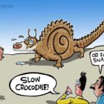Slow Crocodile!