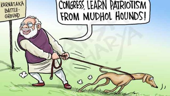 Now Mudhol dogs enter Karnataka election campaign!